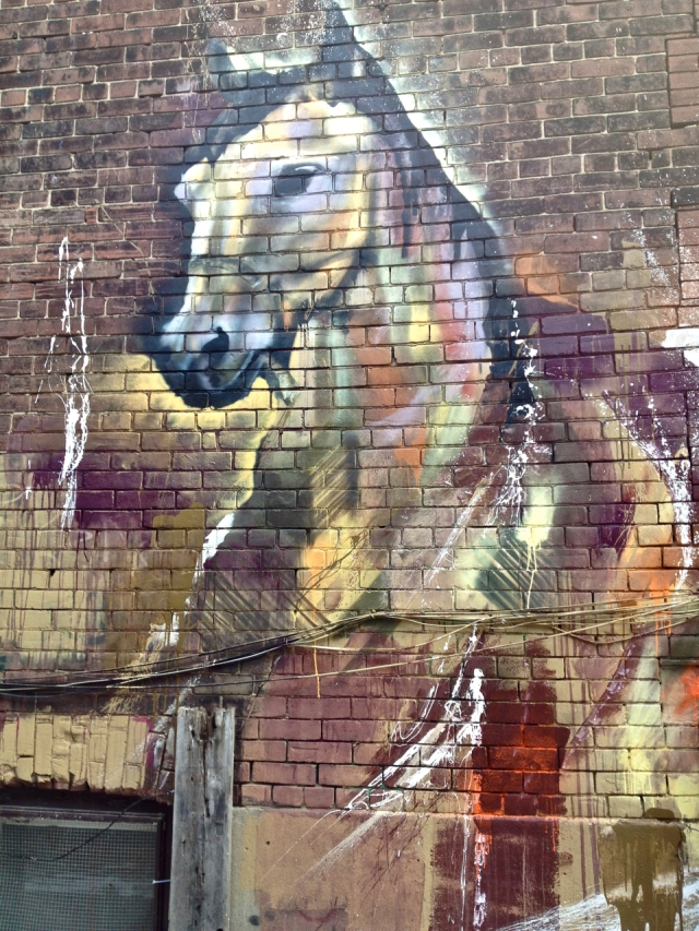 Horse #5