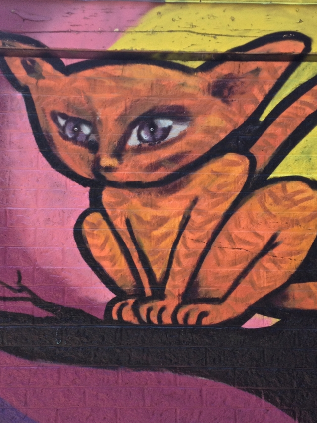 Mooncat #4