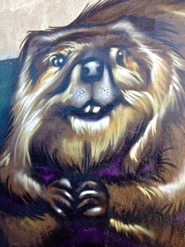 Beaver #1