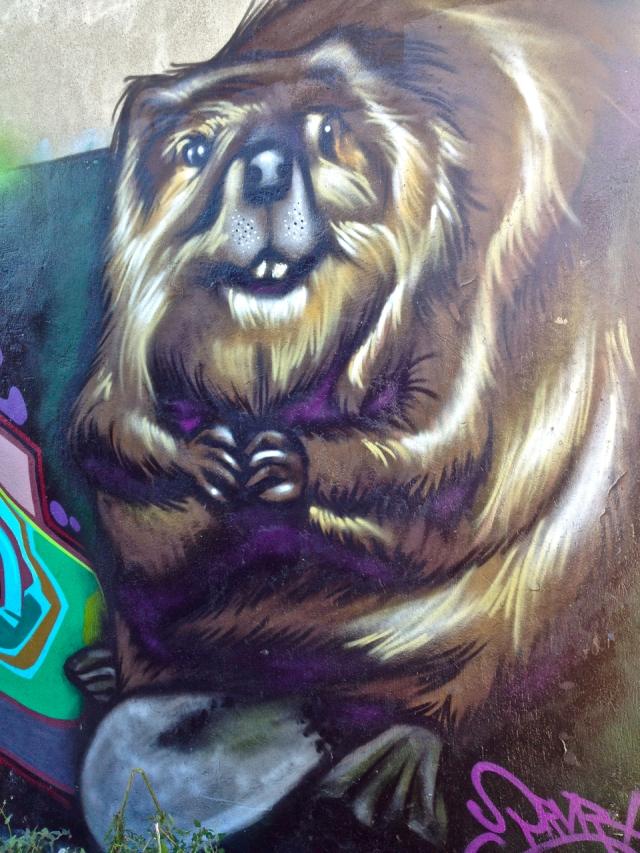 Beaver #2