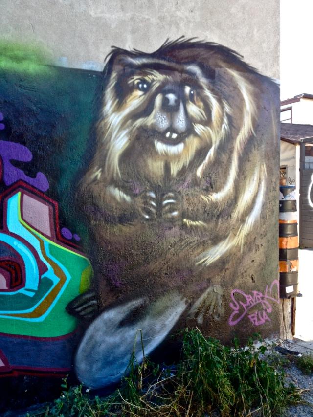Beaver #3