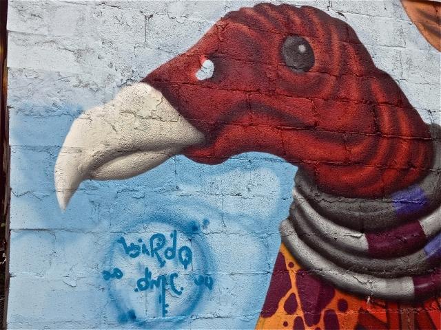Artist: Birdo - W/dmc