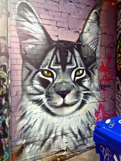 Pussycat #1
