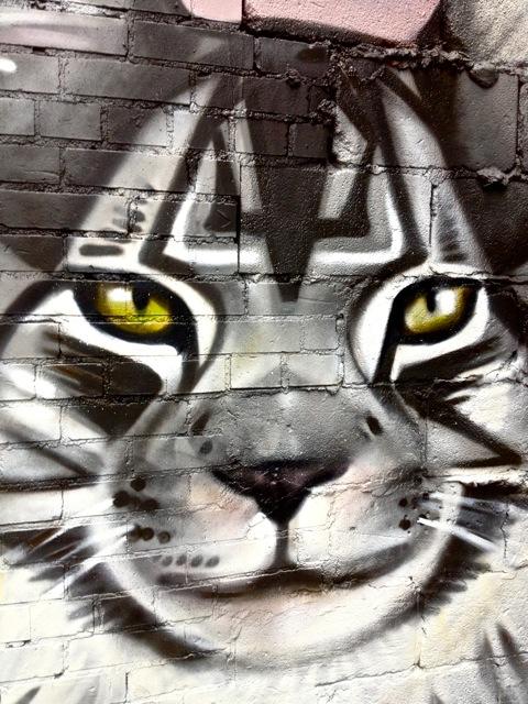 Pussycat #2