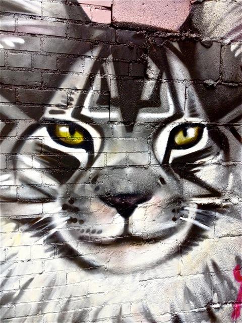 Pussycat #3