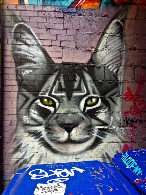 Pussycat #5