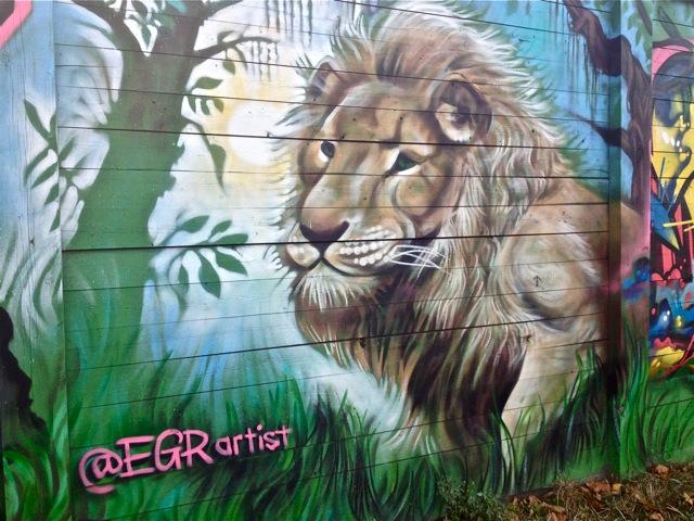 Lion #6
