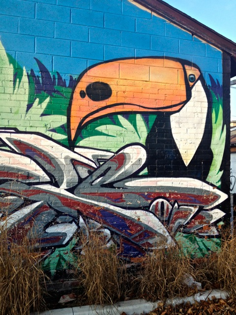 Toucan #2