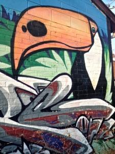 Toucan #4