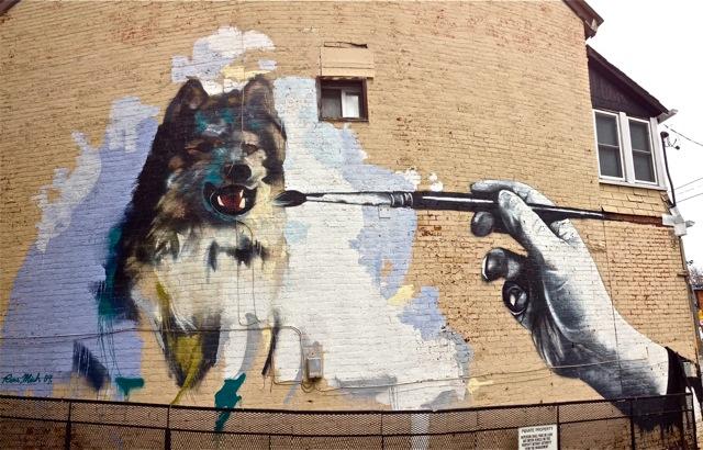 Dog #4