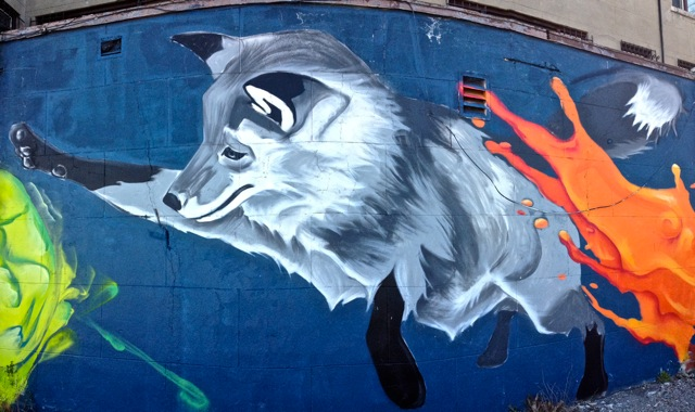 Foxs #1