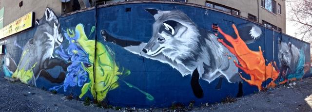 Foxs #10