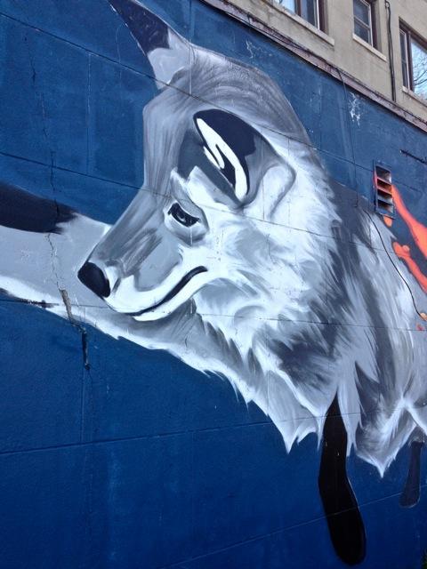 Foxs #3