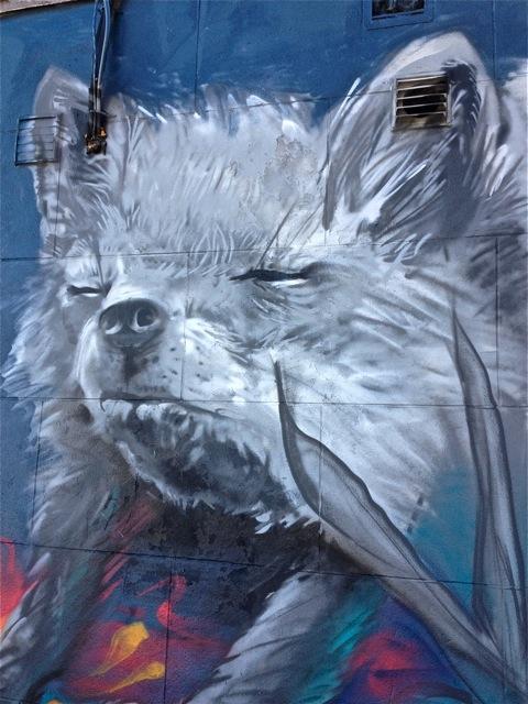 Foxs #4