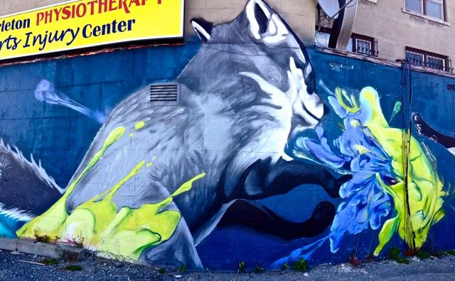 Foxs #6