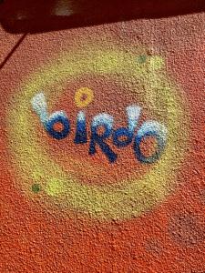 bbirdo-6