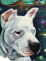 dogy3
